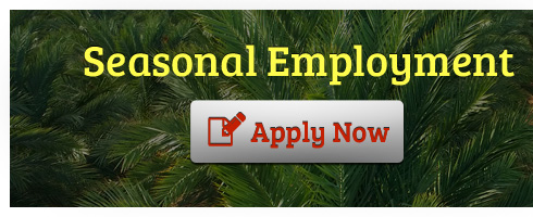 seasonal-employment_en